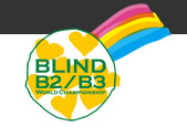 2013 IBSA ブラインドサッカー世界選手権 B2/B3大会
